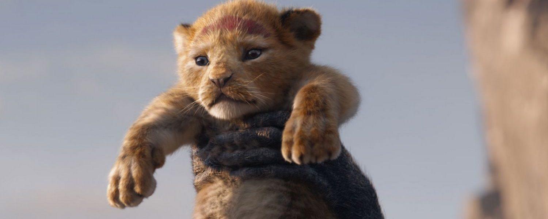 image film le roi lion cinéma pinsaguel